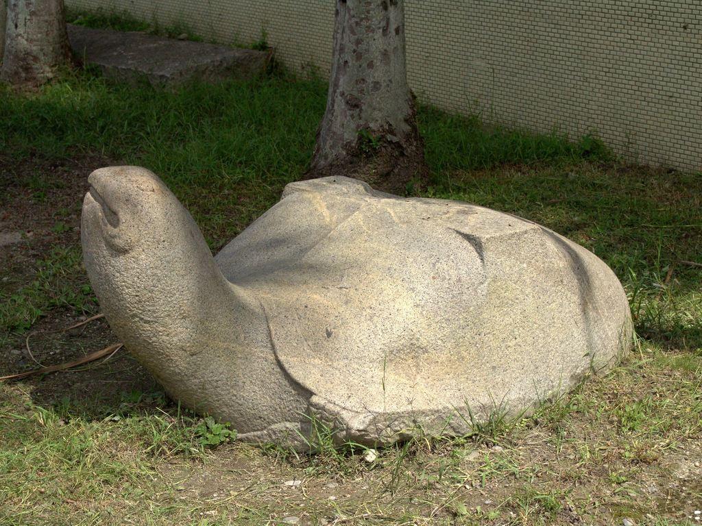 Black Stone Turtle Raising Its Head