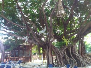 《樹影婆娑中,建物幢幢》之1,作者:林淑鈴